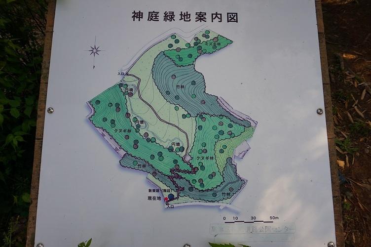 02 神庭緑地