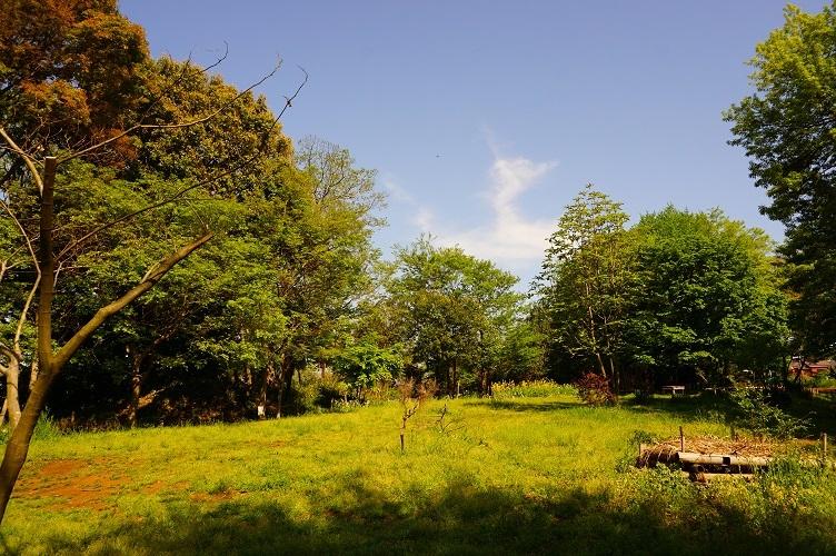 04 神庭緑地