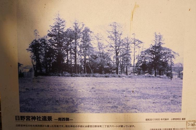 01 日野宮古写真
