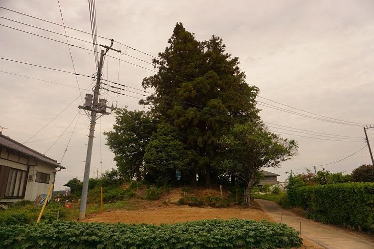 01 上河内大塚古墳(東から)