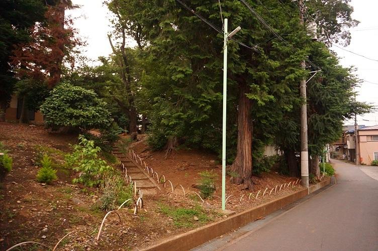 14 川越藤間諏訪神社下の崖面(南西側)