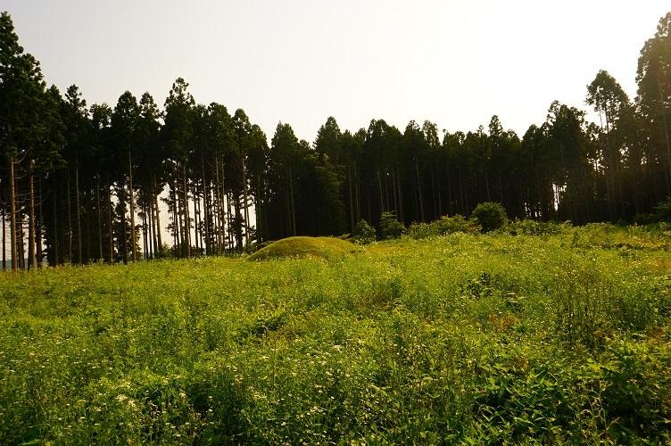 07 天神山遺跡 T2号墳遠望