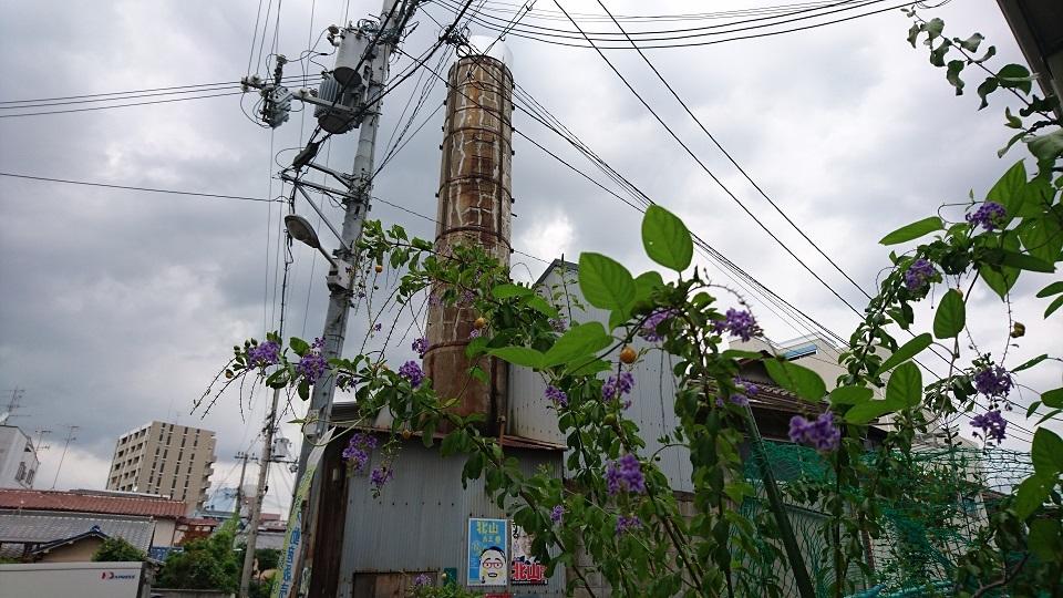 13 大阪塚本夏草と煙突