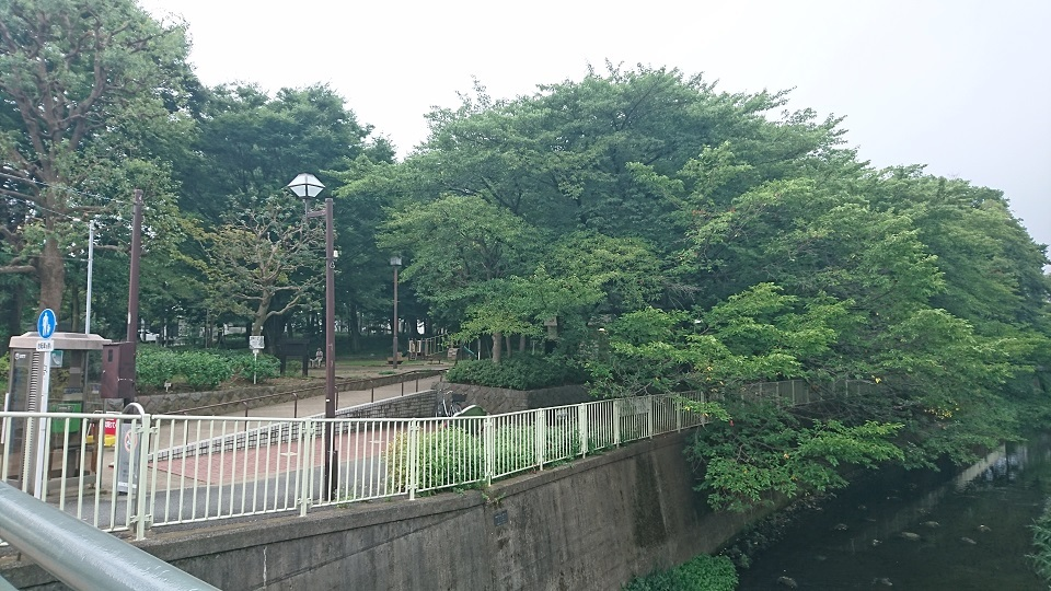 01 杉並塚山公園遠景