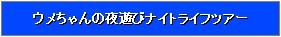 ws2011-000926_201612262039491ec.jpg