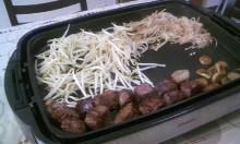 大阪市の鍼灸・ヒーリング整体院 『たなごころ』代表 池田賢治のブログ-肉(その後)