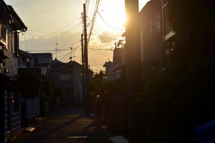 DSC_4271_01.jpg