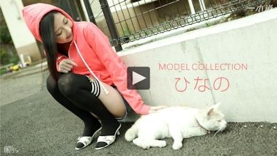 モデルコレクション 大沢ひなの -一本道