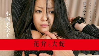 花弁と大蛇 小向美奈子 -カリビアンコム