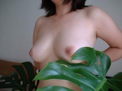美乳なおっぱい画像 11