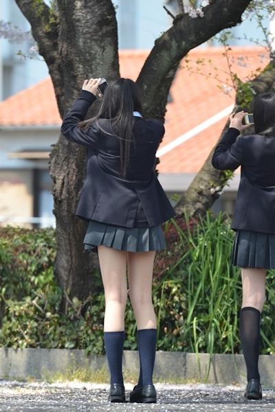 日本のJKのミニスカート画像 12