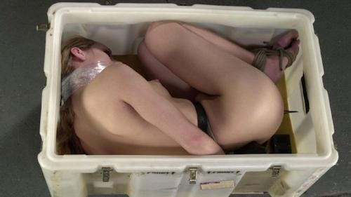 西洋女性の緊縛&拘束ヌード画像 6