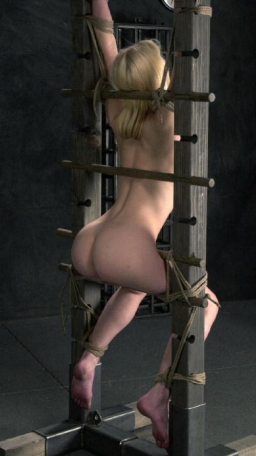 西洋女性の緊縛&拘束ヌード画像 8