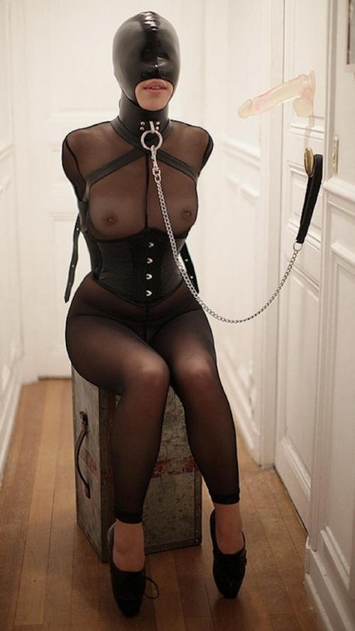 西洋女性の緊縛&拘束ヌード画像 13