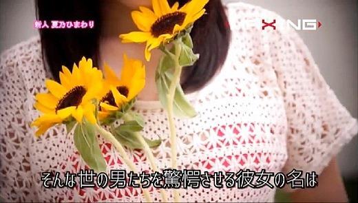 夏乃ひまわり 143