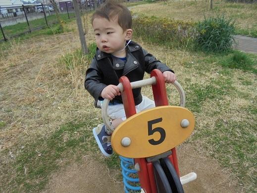 blogDSC00668.jpg