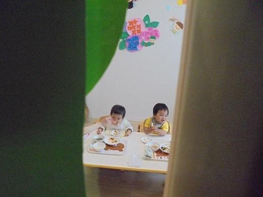 blogDSC01078.jpg