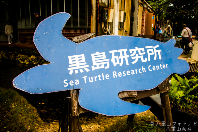 黒島研究所 亀の看板