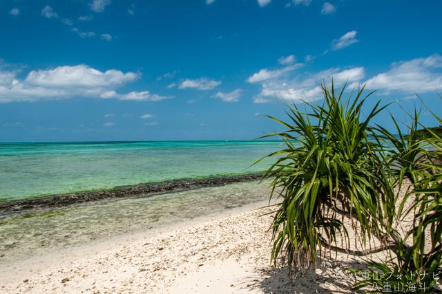 竹富島 西桟橋からコンドイビーチまでの風景