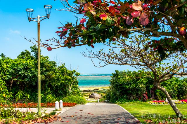 石垣島 大浜集落の下の海岸