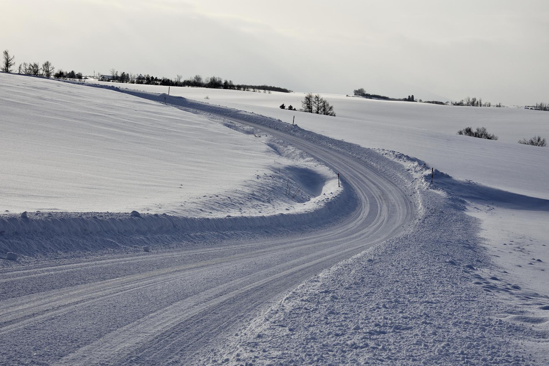 美瑛の雪道