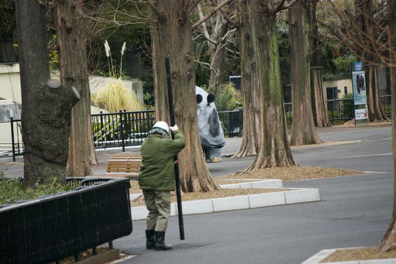 上野動物園の猛獣脱走訓練