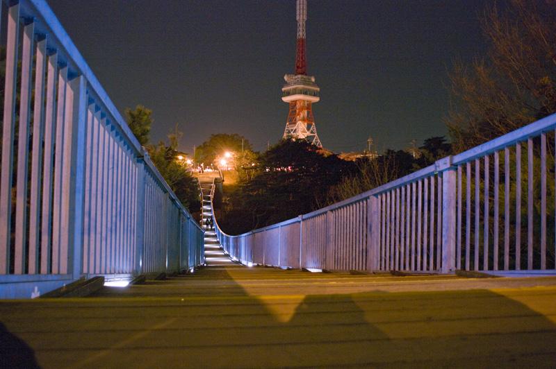 八幡山公園 夜景 宇都宮タワー