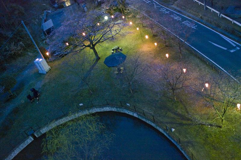 アドベンチャーブリッジ 夜景 八幡山公園