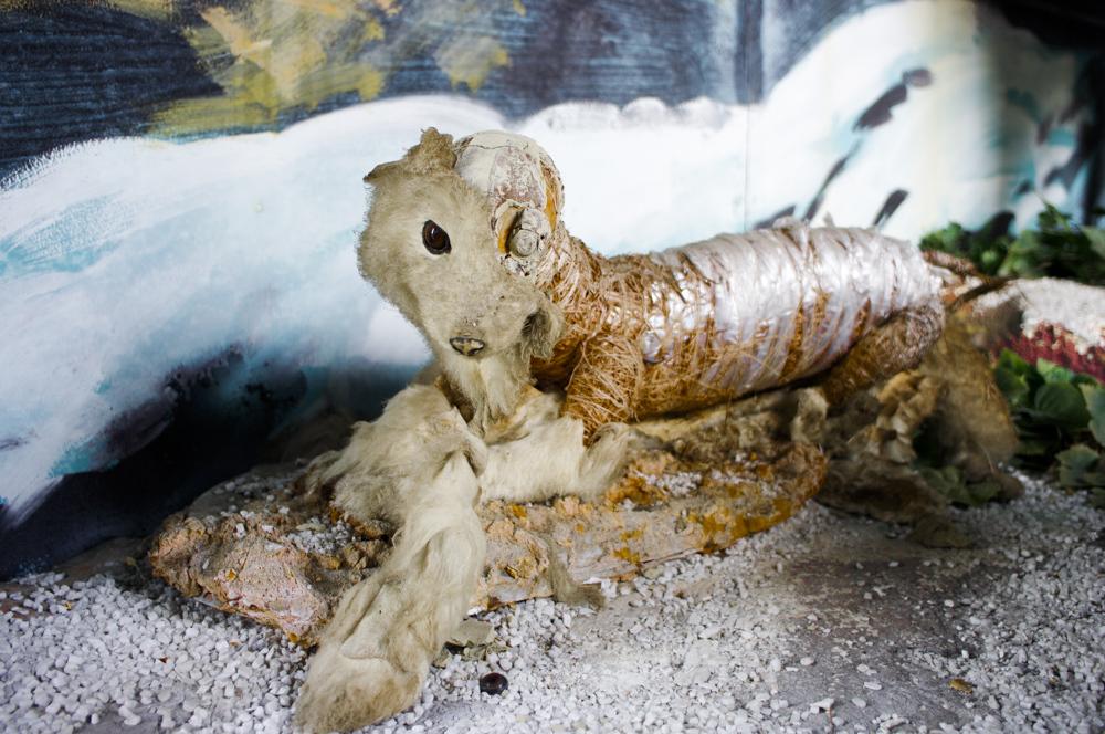 岐阜県の遊園地恵那峡ワンダーランドの廃墟空間にいた幽遊白書の躯っぽい獣