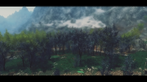 DynDOLOD Billboards for The Blue Forest前enb 2017_10_14 00_58_40_95