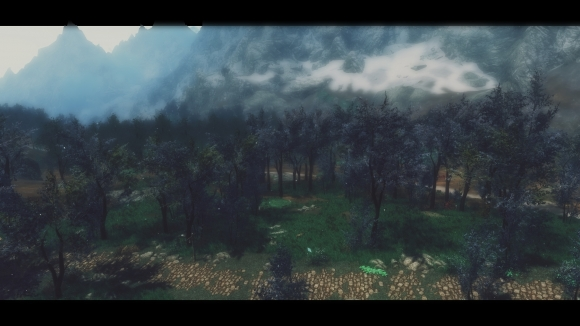 DynDOLOD Billboards for The Blue Forest後enb 2017_10_14 04_11_15_88