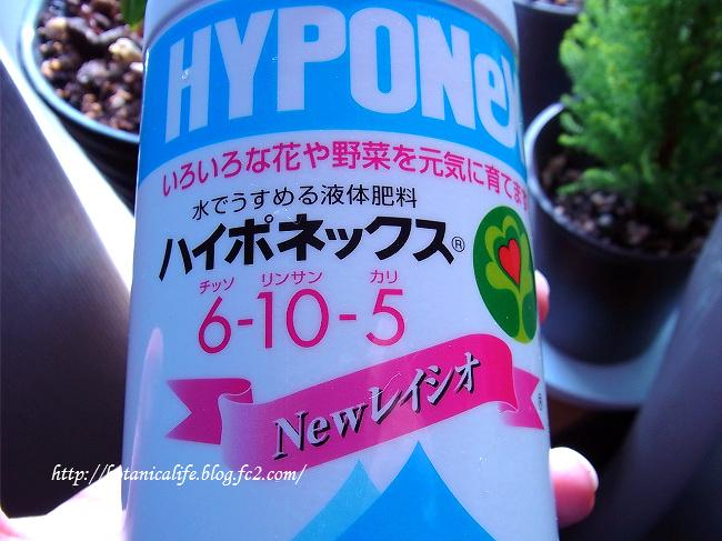 ハイポネックス 初挑戦!!