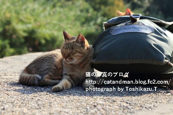IMG_0048s.jpg