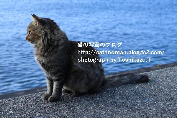 IMG_0062s.jpg
