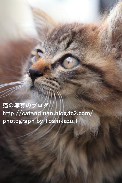IMG_6841s.jpg