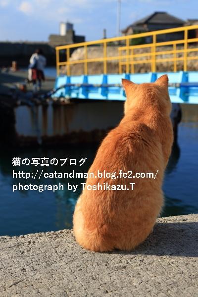 IMG_9898s.jpg