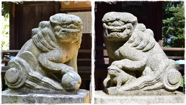 國神神社・狛犬