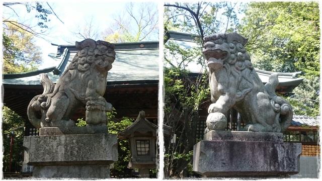 野木神社・狛犬