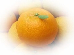 mandarinorangediet