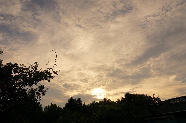 08 高津区諏訪地区の夕暮れ