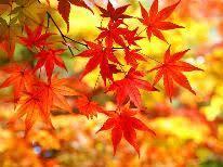 危険な紅葉狩り・5~茶と華と・秋の番外編~