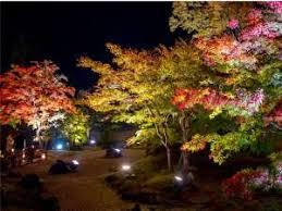 危険な紅葉狩り・9~茶と華と・秋の番外編~