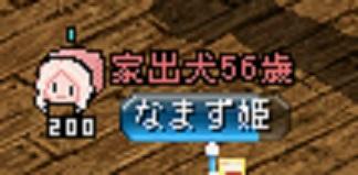 14 なまず姫さん v4