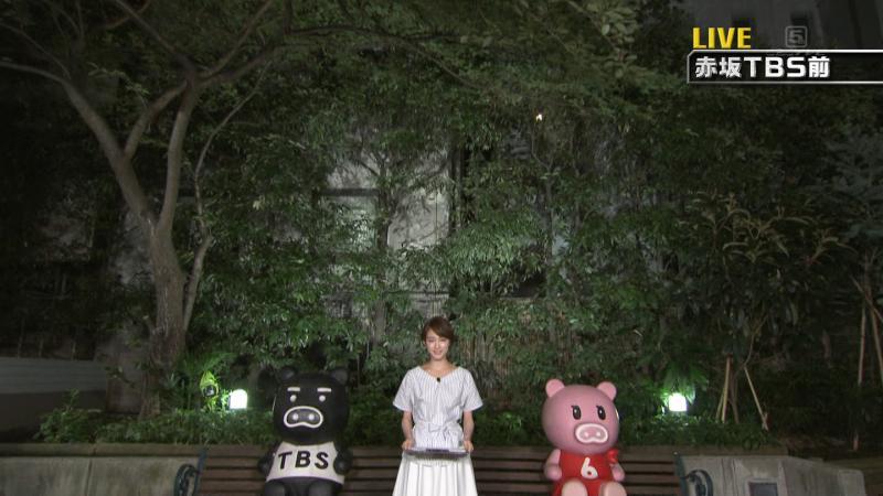 新井恵理那