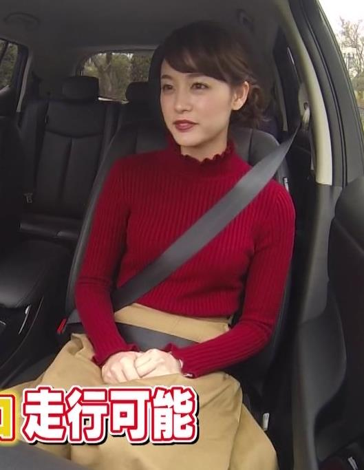 新井恵理那 シートベルトでパイスラッシュになってそうでなってないキャプ画像(エロ・アイコラ画像)