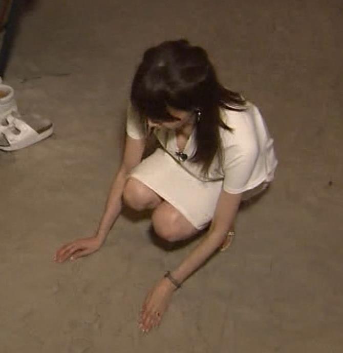 石田紗英子 Vネックで前かがみ、巨乳おっぱいチラリキャプ画像(エロ・アイコラ画像)