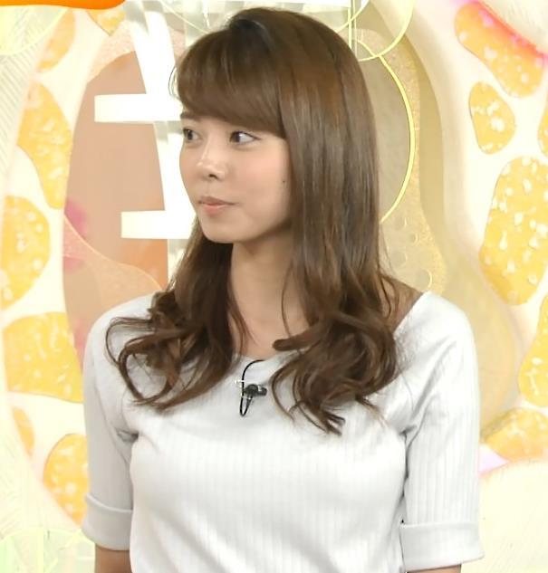 宮澤智 胸のふくらみキャプ画像(エロ・アイコラ画像)