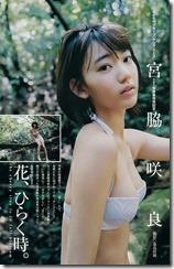 miyawaki-sakura-290804 (3)