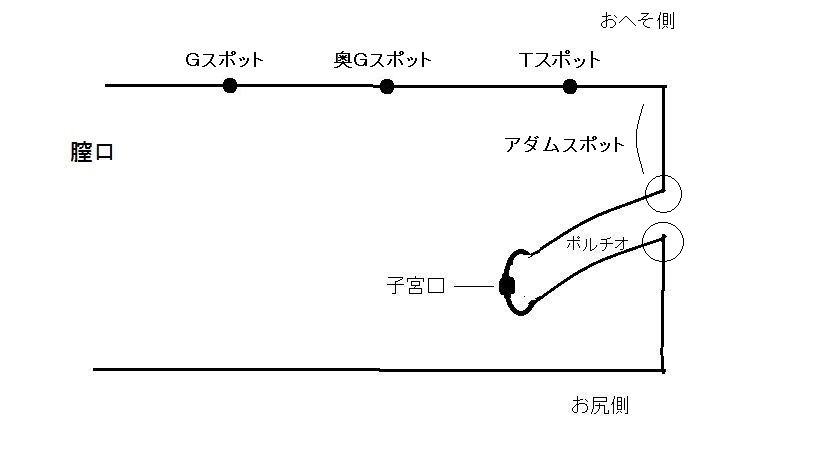 porutio1.jpg
