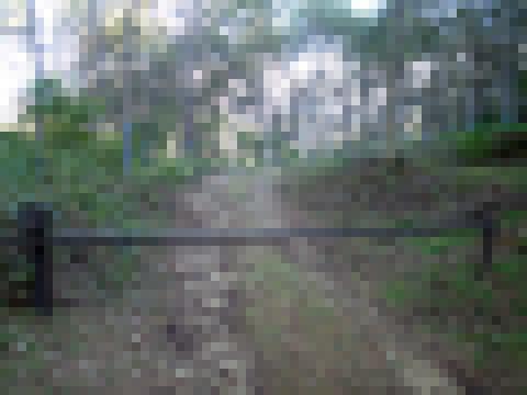PA081103.jpg